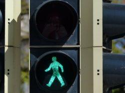 """Kündigung: Armin Veh und die Frage """"Wann darf ich gehen?"""""""